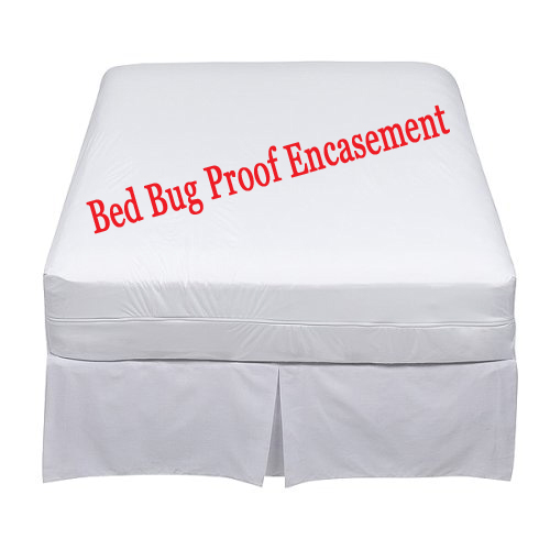 Las Vegas NV Bed Bug Extermination Pest Control Canine